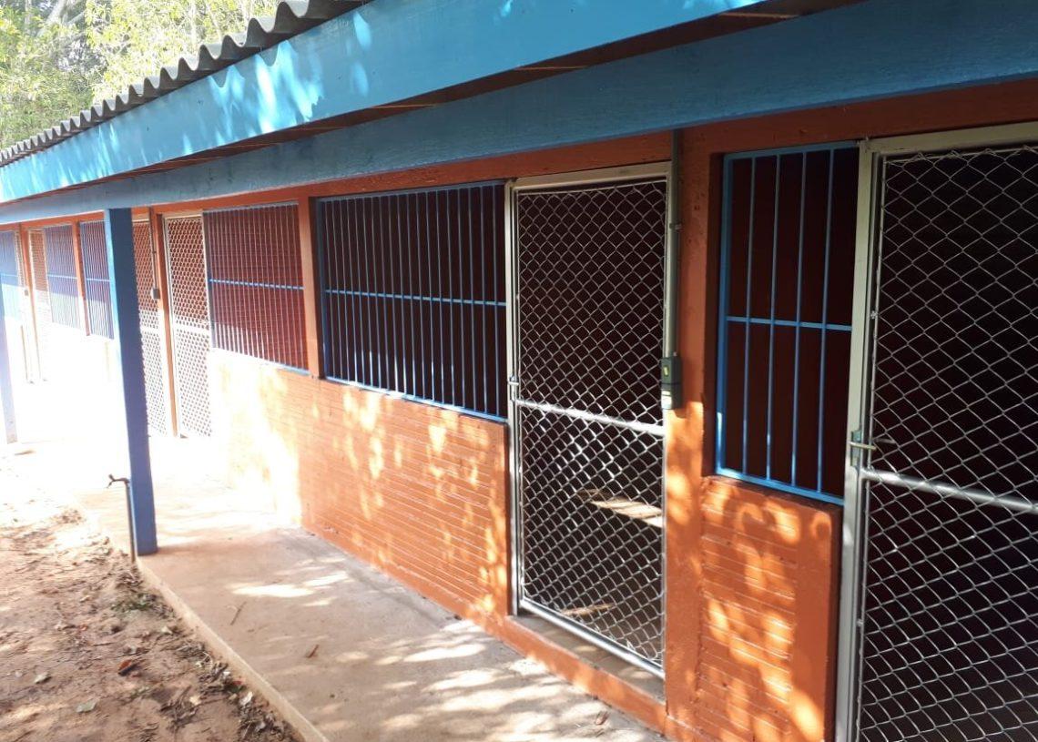 Construção destinada para animais em recuperação após atendimento