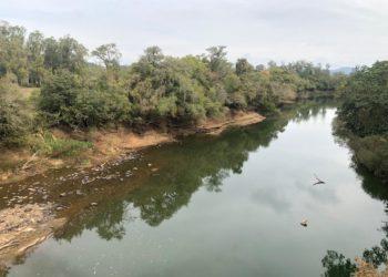 Nível do Rio dos Sinos em estado crítico - Foto: Caroline Waschburger.