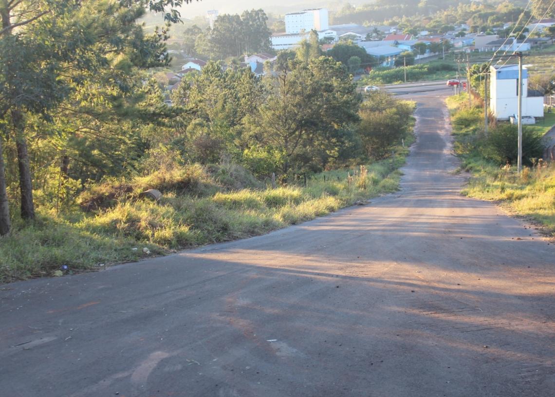 Via no centro da polêmica está localizada no bairro Industrial  Foto: Fábio Radke