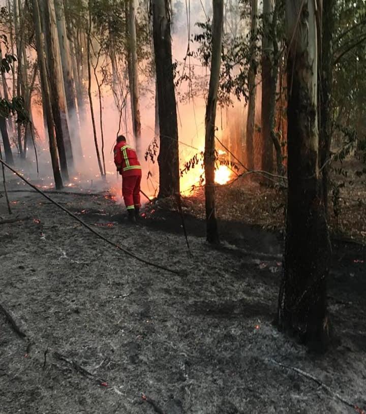 Foto: Bombeiros Voluntários de Nova Hartz