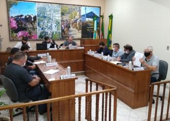 Vereadores aprovaram criação de semana de conscientização e combate ao feminicídio Foto: Deivis Luz