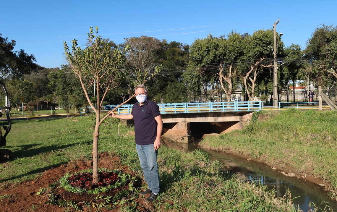 Pedro Braun plantou a espécie em homenagem ao seu pai falecido e acompanhou o replantio junto ao Arroio Schmidt Foto: Laura Poersch Schommer/ PMCB