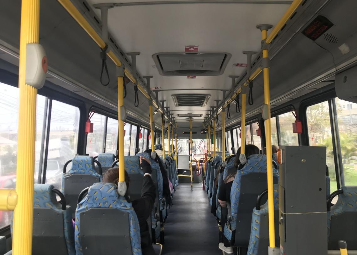 Novos ônibus possuem assentos preferenciais para idosos, obesos e cadeirantes. Foto: Henrique Ternus
