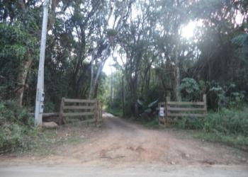 Ação fiscalizatória da Prefeitura, Brigada Militar e Polícia Civil busca coibir desmatamento Foto: Prefeitura de Nova Hartz