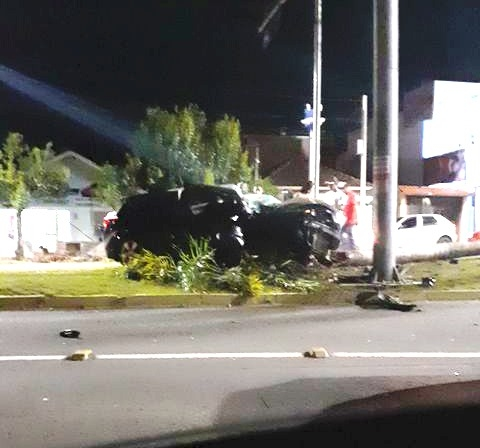 Motorista subiu em canteiro e atingiu coqueiro (Foto: Divulgação)
