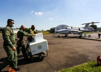 Avião da Brigada Militar transportou vacinas pela manhã e à tarde - Foto: Felipe Dalla Valle/Palácio Piratini