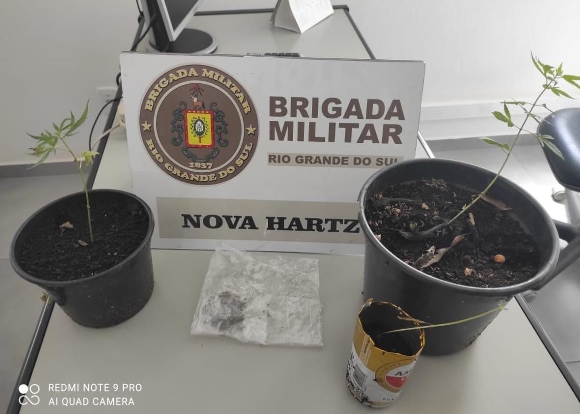 Vasos foram apreendidos pelos policiais (Foto: Brigada Militar)