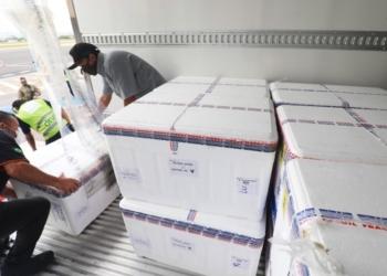 Caixas térmicas contendo novas doses de CoronaVac chegaram ao aeroporto de Porto Alegre na manhã desta quarta, dia 3 - Foto: Itamar Aguiar/Palácio Piratini