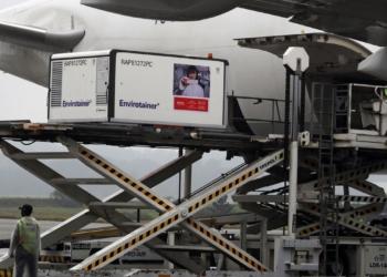 Carga com primeiras doses da CoronaVac chega ao Aeroporto Internacional de São Paulo - Foto: Reuters/Amanda Perobelli