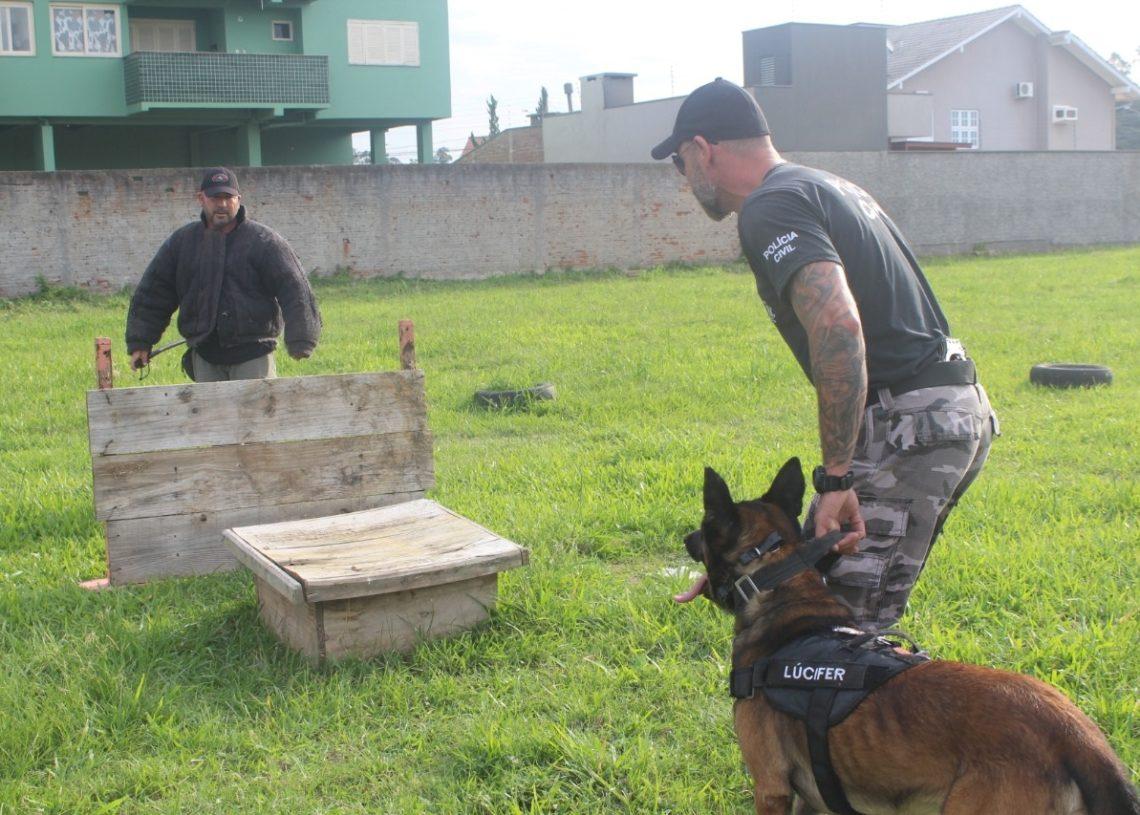 Medeiros e Luciano em treinamento com Lúcifer no terreno cedido por morador (Fotos: Melissa Costa)