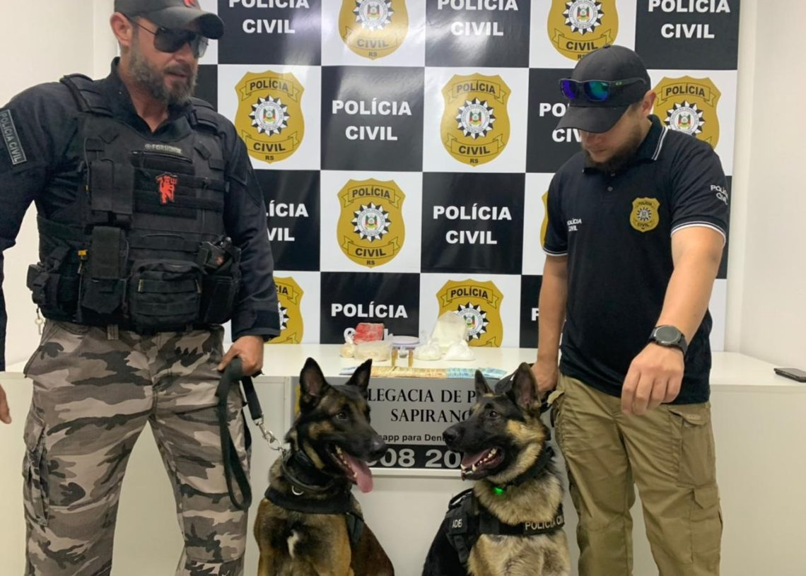 Cães auxiliaram na localização da droga   (Foto: Polícia Civil)