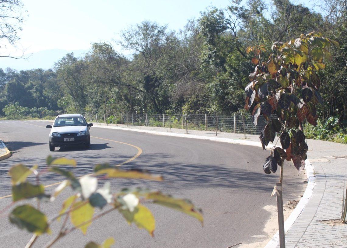 Novo trecho da Avenida Mauá receberá a extensão da rede elétrica  (Foto: Melissa Costa)